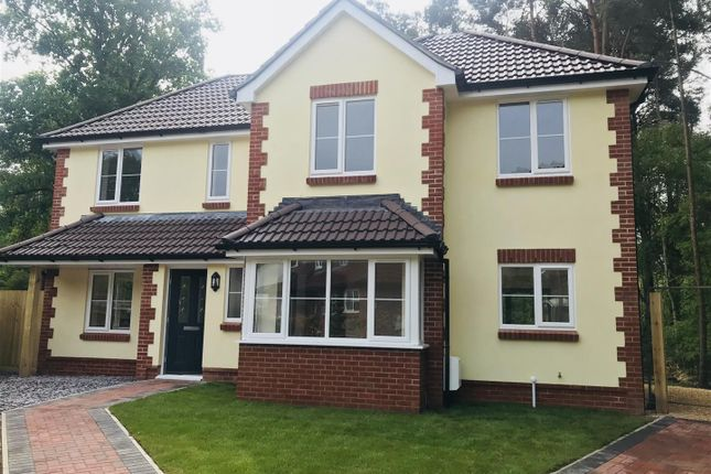 Thumbnail Detached house for sale in Sycamore Place, Wimborne