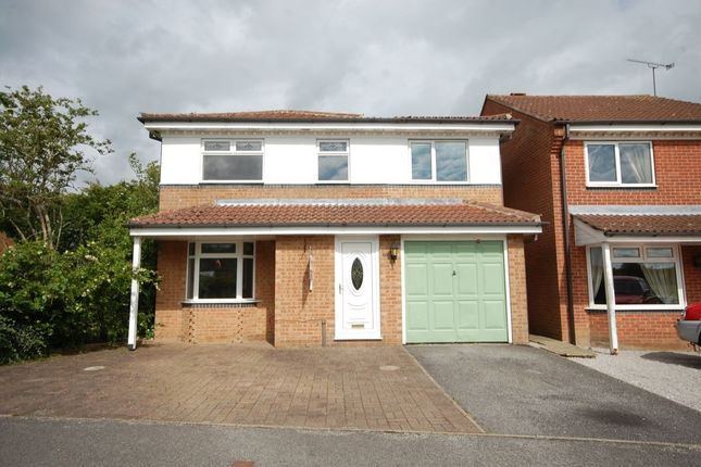 Thumbnail Detached house to rent in Springvale Road, Danesmoor, Chesterfield