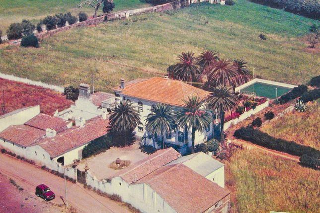 Thumbnail Country house for sale in Beja, 7800 Beja, Portugal