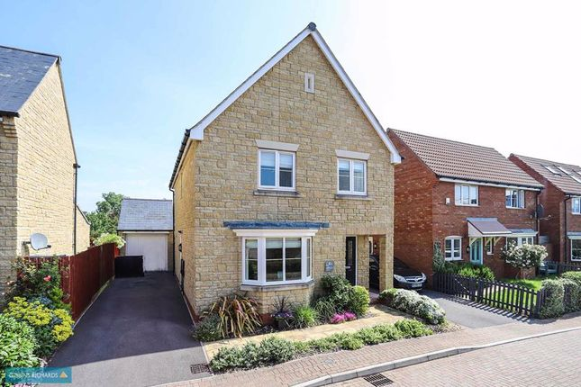 Thumbnail Detached house for sale in Jasmine Close, Bridgwater