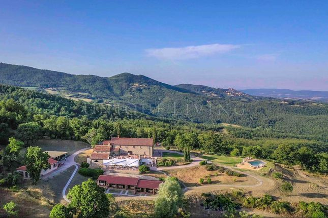 Thumbnail Hotel/guest house for sale in Grosseto, 58100, Italy