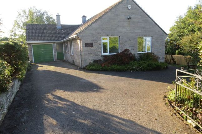 Thumbnail Bungalow to rent in The Beeches, Aller, Langport