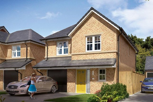 "Thumbnail Detached house for sale in ""The Newton"" at Markle Grove, East Rainton, Houghton Le Spring"
