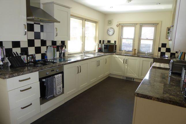 Thumbnail Detached bungalow to rent in Caereithin Farm Lane, Ravenhill, Swansea
