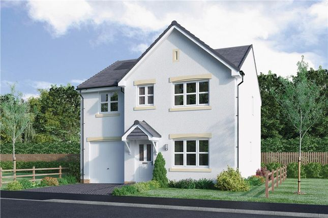 "Thumbnail Detached house for sale in ""Haig"" at Mcdonald Street, Dunfermline"