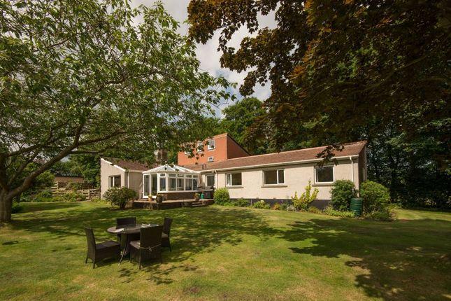 Thumbnail Detached house for sale in Owlsgate, Haddington
