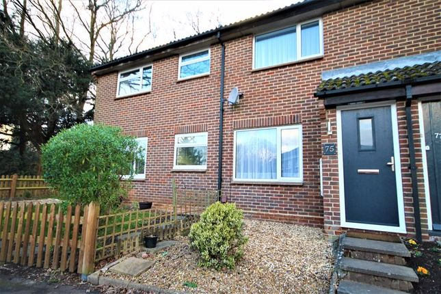 Thumbnail Property to rent in Lysander Way, Waterlooville