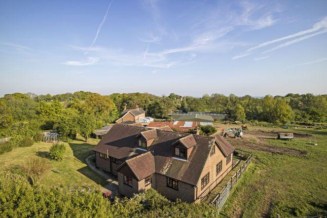 Thumbnail Farmhouse for sale in South Lane, Dallington