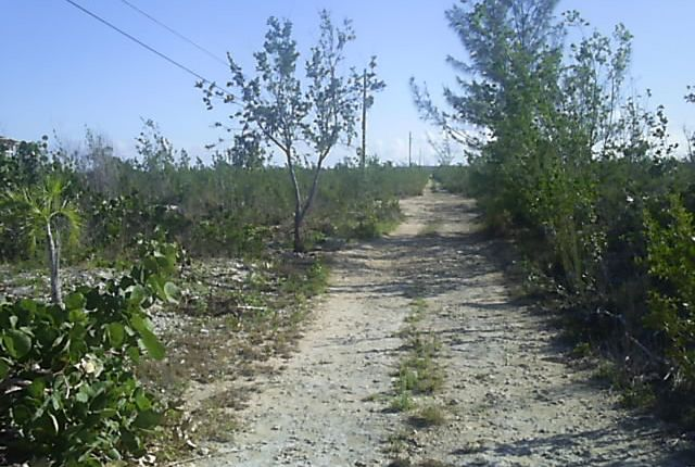 Land for sale in Whymms, Long Island, The Bahamas