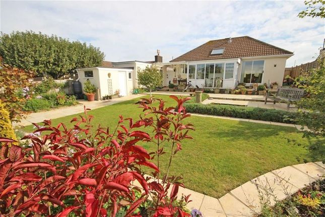 Thumbnail Detached bungalow for sale in North Boundary Road, Copythorne, Brixham