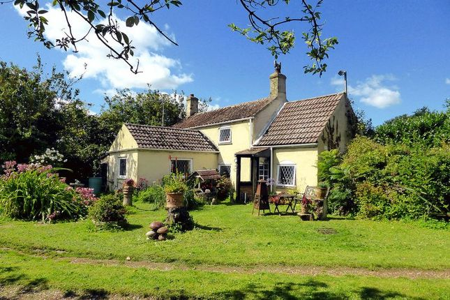 Thumbnail Cottage for sale in Green Road, Upwell, Norfolk