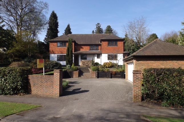 Thumbnail Detached house for sale in Waverley Drive, Camberley
