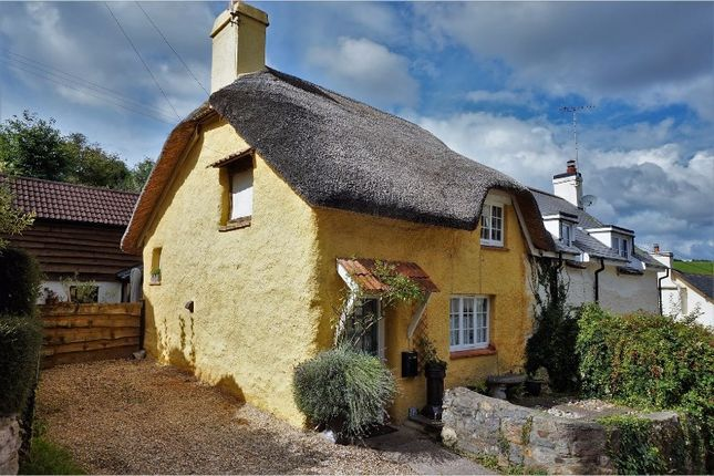 Thumbnail Cottage for sale in Westwood, Exeter