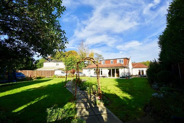 Thumbnail Detached house for sale in Spring Road, Southampton