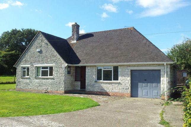 Thumbnail Detached bungalow to rent in Bridge, Sturminster Newton