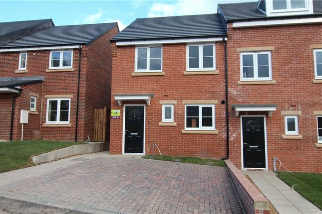 Thumbnail Semi-detached house to rent in Curlew Drive, Stockton-On-Tees