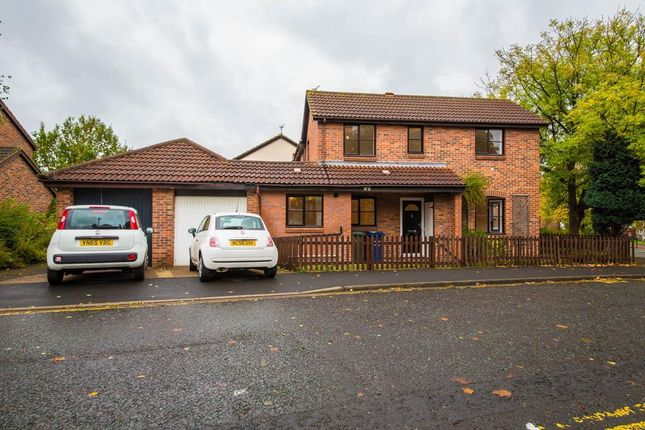 Thumbnail Semi-detached house for sale in Dunns Terrace, Spital Tongues, Newcastle Upon Tyne