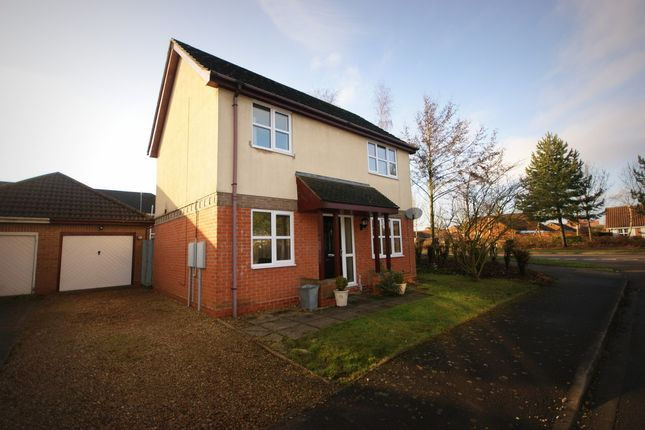 Thumbnail Detached house to rent in Wedgewood Drive, Spalding
