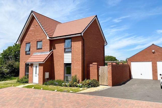 Thumbnail Detached house for sale in Blackthorn Drive, Harlow