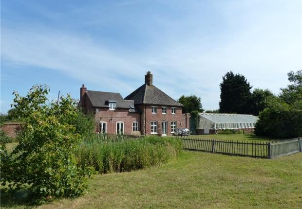 Thumbnail Equestrian property to rent in Garden Farm Cottage, The Town, Great Staughton
