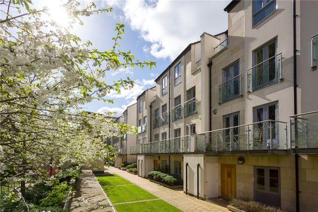 Thumbnail Terraced house to rent in Kings Pool Walk, York