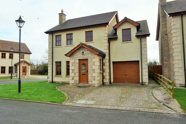 Thumbnail Detached house for sale in James Lodge, Derrymore Road, Aghalee, Craigavon