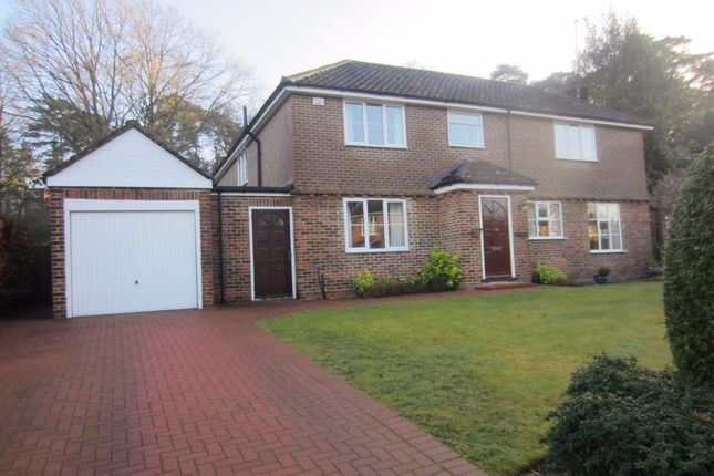 Thumbnail Detached house to rent in Woodend Drive, Ascot