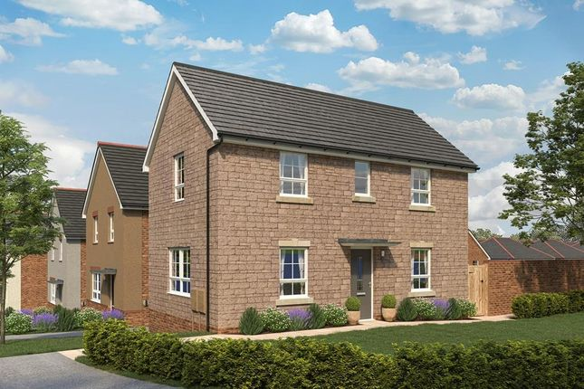 """Thumbnail Detached house for sale in """"Moresby"""" at Broom Park, Okehampton"""