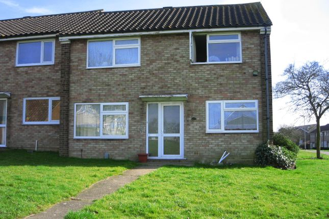 Thumbnail End terrace house to rent in Dahlia Walk, Colchester
