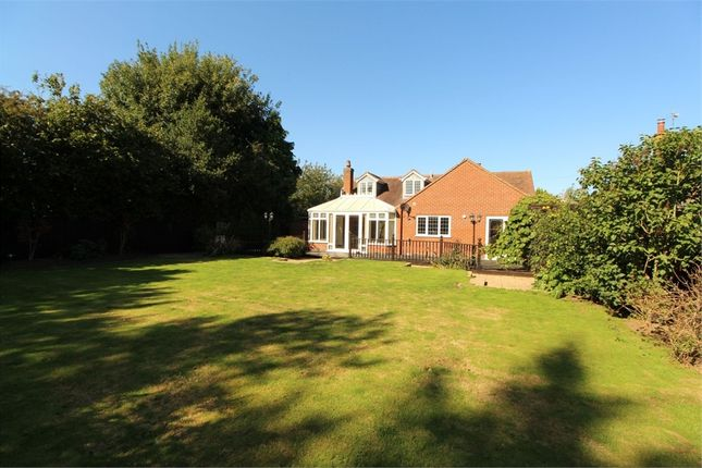 Thumbnail Detached bungalow for sale in South View, Main Street, Frolesworth, Lutterworth