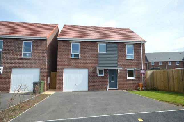 Thumbnail Detached house to rent in Staddle Stone Road, Pinhoe, Exeter, Devon