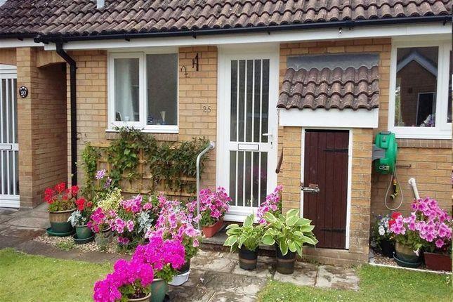 Thumbnail Semi-detached bungalow for sale in Poundsgate Close, Berry Head, Brixham