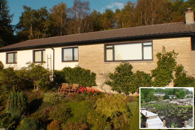 Thumbnail Detached bungalow for sale in Musdale Raod, Oban, Argyll