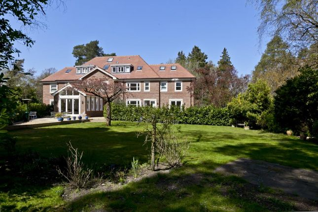 Thumbnail Semi-detached house to rent in Old Avenue, St Georges Hill