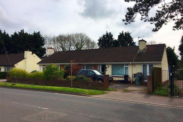 Thumbnail Bungalow to rent in Borough Road, Paignton