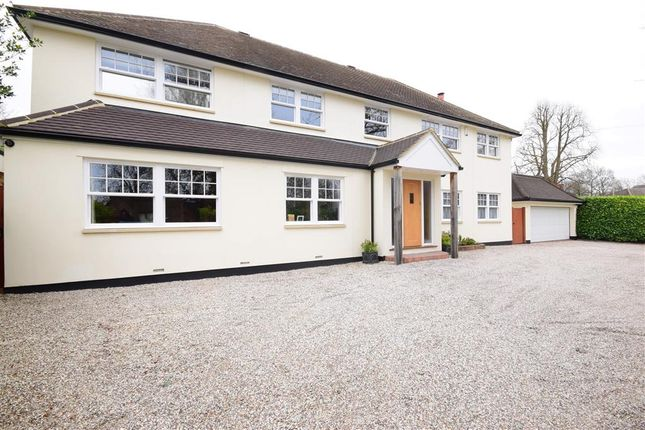 Thumbnail Detached house for sale in Priests Lane, Shenfield, Brentwood, Essex