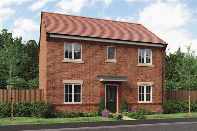 "Thumbnail Detached house for sale in ""Buchan"" at Hastings Close, Chesterfield"