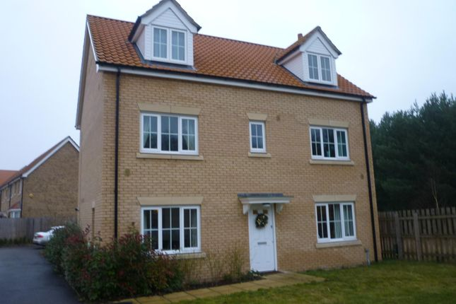 Thumbnail Property to rent in Evergreen Way, Mildenhall, Bury St Edmunds