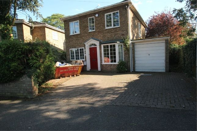 Thumbnail Detached house to rent in Orchard Avenue, Burnham, Berkshire