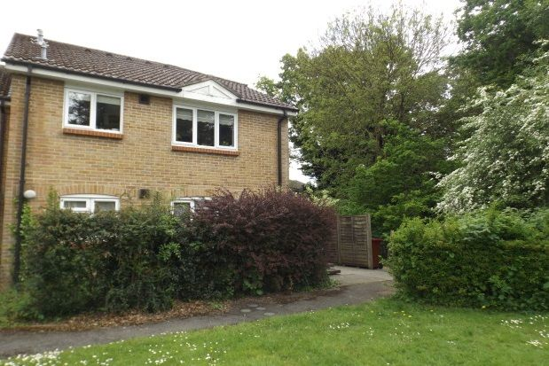 Thumbnail Studio to rent in Oakwood Close, Midhurst