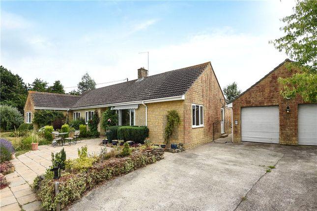 Thumbnail Detached bungalow for sale in Rowden Mill Lane, Stourton Caundle, Sturminster Newton, Dorset
