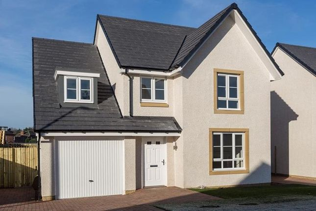 "Thumbnail Detached house for sale in ""Drummond"" at Auchinleck Road, Glasgow"