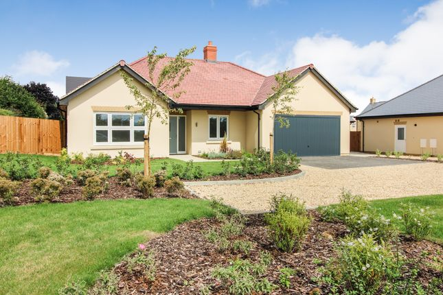 Thumbnail Detached bungalow for sale in Cote Road, Aston, Bampton