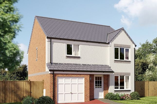 "Thumbnail 4 bedroom detached house for sale in ""The Balerno "" at Grosset Place, Glenrothes"