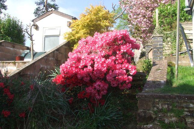 Garden of Princes Street, Penpont DG3