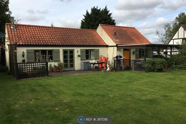 Thumbnail Bungalow to rent in Church Lane, Spilsby