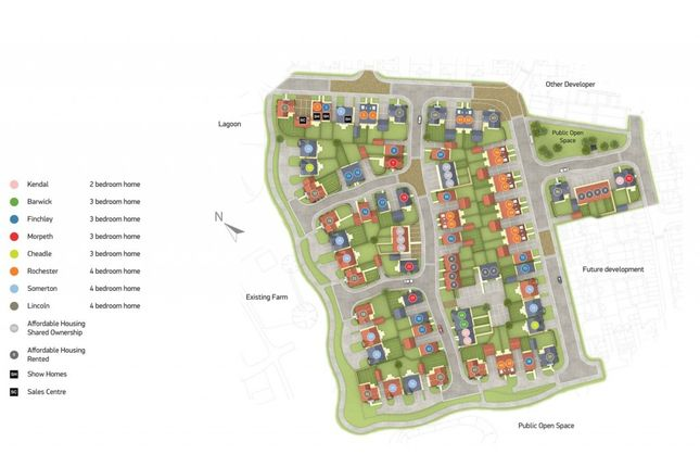 Site Plan (Plot 29)