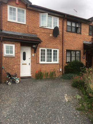 Thumbnail Semi-detached house to rent in Harlestone Close, Luton