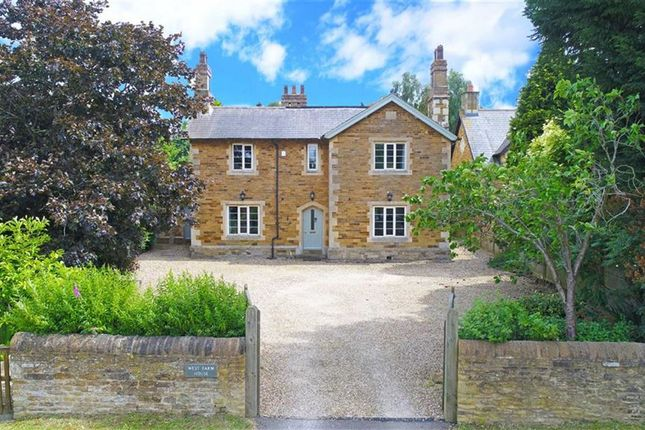 Thumbnail Detached house for sale in Main Street, Hannington, Northampton
