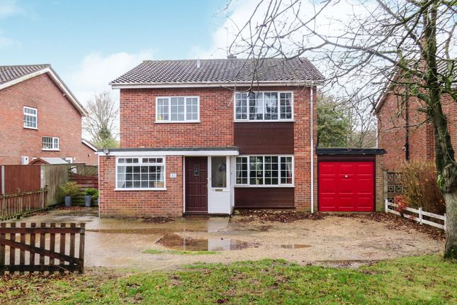 Thumbnail Detached house for sale in Necton Road, Little Dunham, King's Lynn